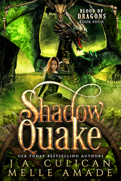 Book 4 - Shadow Quake